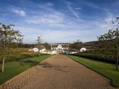 Brookdale estate - The Cape Wineland experience with wine cellar and wine tasting room, gym and pool in South Africa for up to 12 guests.