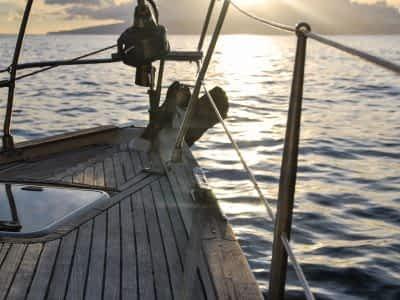 Canva - Brown Boat on Sea copy